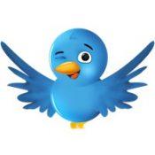 twitter-bird-only