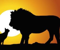 Paysage_Savane_Lion