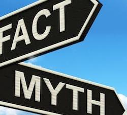 fact-myth-steet-335