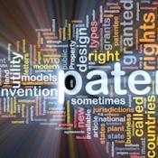 patent-keyterm-335