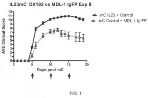 MDL-1 ligand