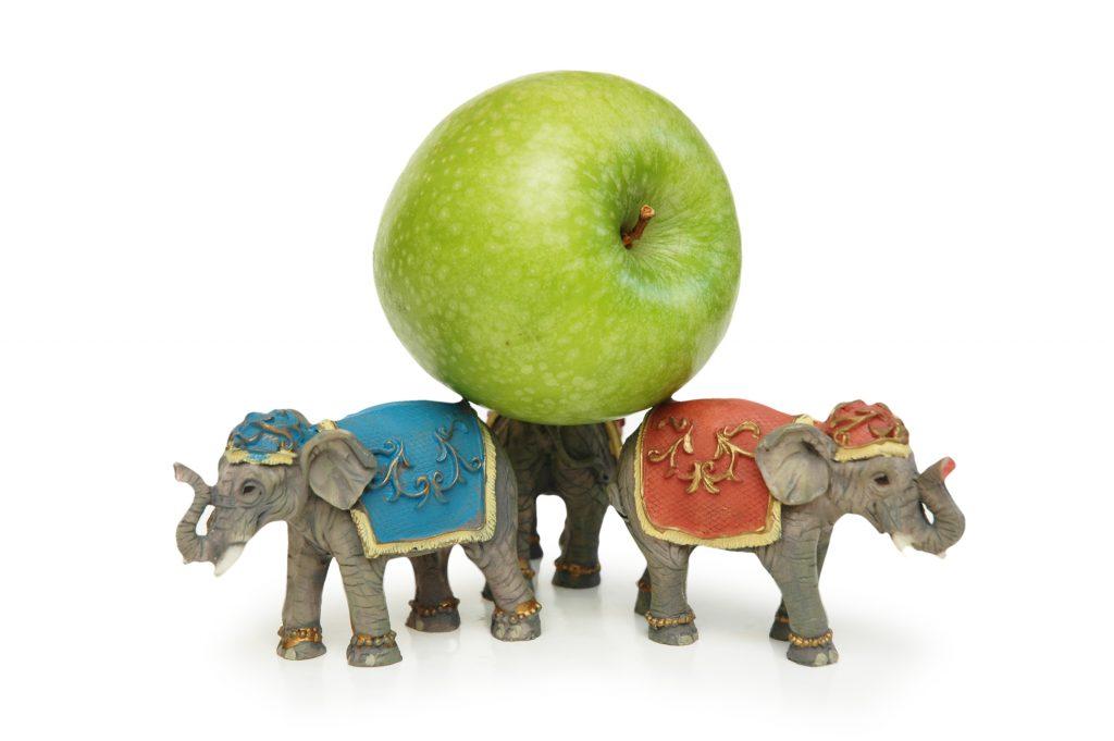 https://depositphotos.com/4427649/stock-photo-elephants-holding-green-apple-isolated.html